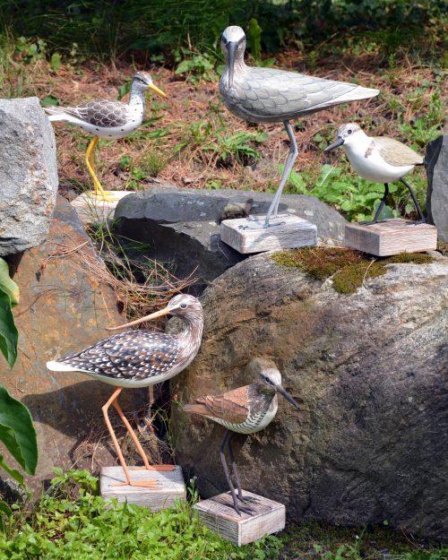 Sous le Charme des Oiseaux