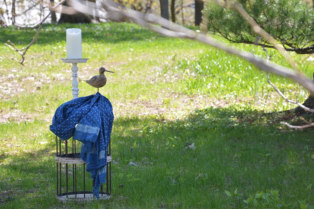 Bienvenue à l'oiseau charmeur!